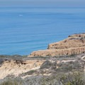 The cliffs and the Pacific Ocean.- Torrey Pines State Natural Reserve