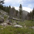 The trail climbs through occasional alpine meadows.- Middle Fork of the Boise River, Mattingly Creek and Divide