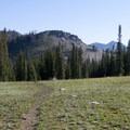 The view of the open meadows at the Mattingly Divide.- Middle Fork of the Boise River, Mattingly Creek and Divide