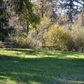 Picnic area at Lost Creek Trailhead.- Elijah Bristow State Park