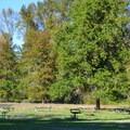 Group picnic area at Elijah Bristow State Park. - Elijah Bristow State Park