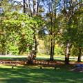 Shady group picnic area.- Elijah Bristow State Park