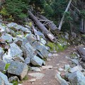 Rocky terrain on the edge of the trail heading into the forest.- Blue Lake Hike