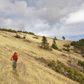 The top of the stunning descent on Mule Mountain Trail.- Little Grayback + Mule Mountain Loop