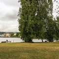 West Montlake Park. The small gravel beach is in the central-right grouping of trees.- Portage Bay Sea Kayaking