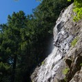 Teneriffe Falls, slowed to a trickle in summer.- Teneriffe Falls
