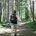 Mild trail grade to Teneriffe Falls.- Teneriffe Falls