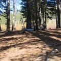 Potential campsite.- Meiss Family Cabin