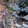 Waterfall Loop.- Waterfall Loop