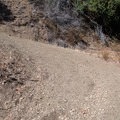 Road to Knobcone.- Knobcone Point + Black Rock Falls Hike via Contour Trail