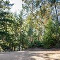 Picnic area at Knobcone.- Knobcone Point + Black Rock Falls Hike via Contour Trail