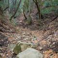 Dry creek bed.- Knobcone Point + Black Rock Falls Hike via Contour Trail