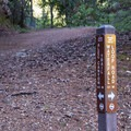 The junction of Waterfall Loop and Alec Canyon Trail.- Alec Canyon + Triple Falls Trail