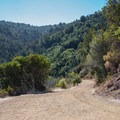 Open and sunny section of the trail.- Alec Canyon + Triple Falls Trail