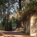 Concrete water tank along Alec Canyon Trail.- Alec Canyon + Triple Falls Trail