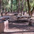 Shady picnic areas.- Uvas Canyon County Park