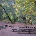 Black Oak group picnic area.- Uvas Canyon County Park