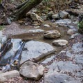 Swanton Creek.- Knobcone Point + Black Rock Falls Hike via Contour Trail