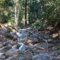 A crossing that is inaccessible during high water.- Knobcone Point + Black Rock Falls Hike via Contour Trail