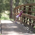 A hiker's bridge over Trail Creek is crossed early in the hike.- Baron Falls + Baron Lakes