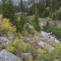 Fall colors along Quens River.- Queens River Trailhead to Queens River Falls + Nanny Creek