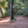 End of the trail picnic area.- Alec Canyon + Triple Falls Trail