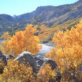 Fall colors at Lake Sabrina.- Lake Sabrina Inlet Hiking Trail