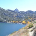 Yellow aspens grow along the Middle Fork of Bishop Creek down to the inlet on Lake Sabrina.- Lake Sabrina Loop Hike
