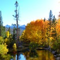 Fall colors below Lake Sabrina.- Lake Sabrina Canoe/Kayak