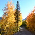 Fall foliage at Lake Sabrina.- Lake Sabrina Canoe/Kayak