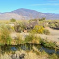 Spring 5.- Keough's Hot Springs Ditch