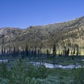 Morning light creeps down the canyon wall to the South Fork of the Payette River.- Picket Mountain Trail