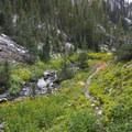 Scenic Lake Trail.- Little Queens River + Scenic Lake