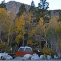 A typical site at Sabrina Campground.- Sabrina Campground