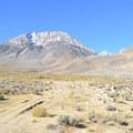 Dirt road leading toward the Eastern Sierra with Basin Mountain on the left.- Buttermilk Country Dispersed Camping