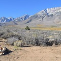 Dispersed Camping with Basin Mountain in the background.- Buttermilk Country Rock Climbing