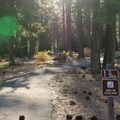 The Spooner Lake Loop Trailhead is located at the parking lot.- Spooner Lake Loop Hike