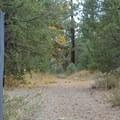Granite Flat Campground.- Granite Flat Campground
