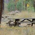 Tent sites at Granite Flat Campground.- Granite Flat Campground
