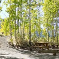 Gull Lake Campground.- Gull Lake Campground