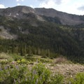 A view of Eureka Gulch from the old mining road.- Eureka Gulch