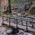 Bridges traverse the creek washouts.- Uvas Canyon County Park