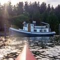 An old boat sits docked in the shade off the coast of Mercer Island.- Mercer Island Sea Kayaking Loop