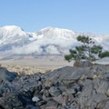The Sierra Nevada seen from Panum Crater.- Panum Crater Plug Trail