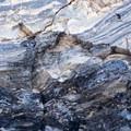 Obsidian of Panum Crater.- Panum Crater Rim Trail