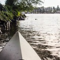 Launching from the small gravel beach at West Montlake Park.- Union Bay Sea Kayaking