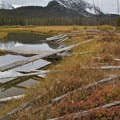 McDonald Lake outlet in October.- Yellow Belly Lake