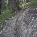 The climb up to Elizabeth Lake is shaded and steep. Unfotunately, the motorcycle traffic on this steep trail has had some damaging effects.- Elk Meadow + Elizabeth Lake