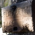 Elizabeth Lake is located below the trail and tucked into an isolated and shady nook. This trail sign indicates where hikers need to descend to the lake.- Elk Meadow + Elizabeth Lake