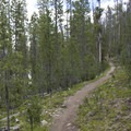 The trail traverses through 2 miles of pleasant, smooth, and flat singletrack before reaching the eastern edge of the meadow.- Elk Meadow + Elizabeth Lake